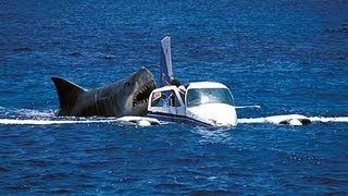 Megalodon Shark Attack Caught On Camera Attacking Crash Air Plane Off Coast of Cambodia real or fake