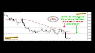 Forex   3 Ducks Trading System   +44 Pips