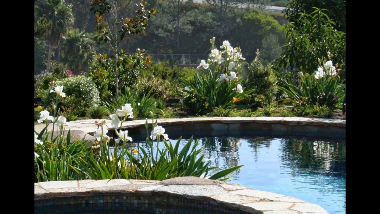 San diego landscape designers - Landscape Design San Diego San Diego Landscape Design