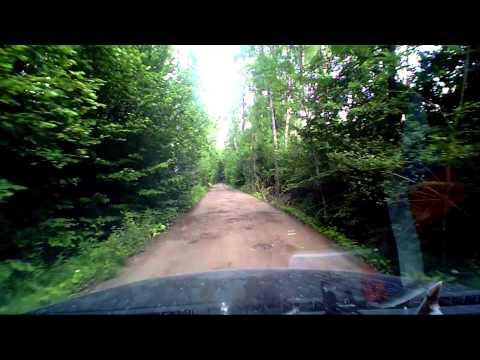 Дорога в лесу. Новая Москва - лесная дорога. Часть 1