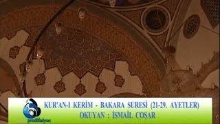 İsmail Coşar - Bakara Suresi (21-29)