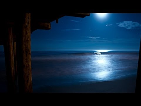 Beethoven Moonlight Sonata with Relaxing Nature Sounds [ Sle