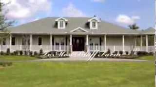 Moss Bluff Farm Equestrian Dream Farm For Sale Ocklawaha Florida
