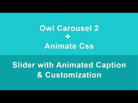 Owl Carousel 2 With Caption Animation (Animate CSS) & Customization