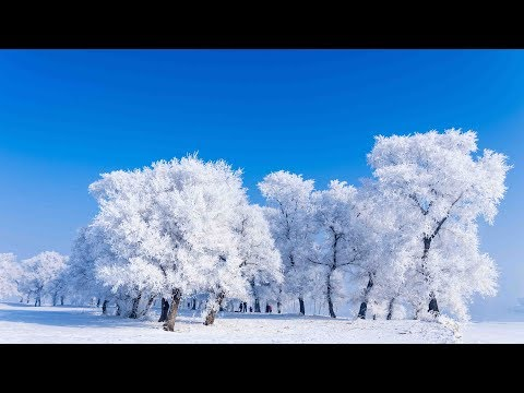 Rime scenery in northeast China's Jilin city