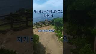 제주 금호리조트 산책 브이로그