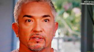 Highly successful Dog Whisperer Ceasar Milan confesses he attempted suicide