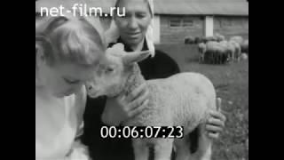 1957г д. Перевоз. Колхоз Ударник. Нолинский район. Кировская обл