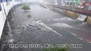 부산 폭우, 곳곳에 침수 피해 속출
