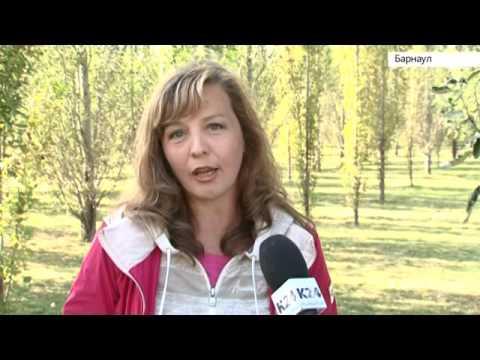 Зеленая роща в опасности. В поселке «Солнечная поляна» хотят вырубить больше 300 деревьев