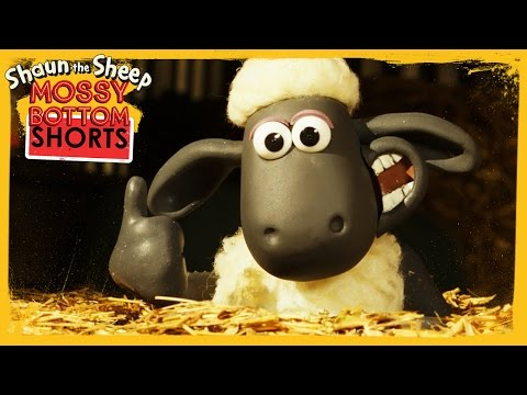 Hay Bale - Shaun the Sheep [Full Episode]