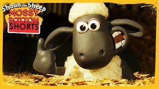 Hay Bale - Shaun the Sheep [Full Episode]