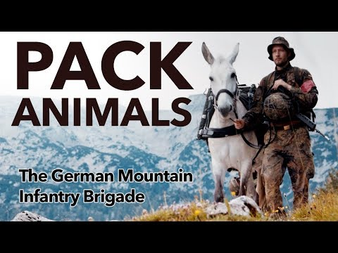 Pack Animals - The 🇩🇪 German Mountain Infantry Brigade