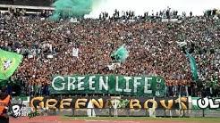 Curva Sud Casablanca : Green Life