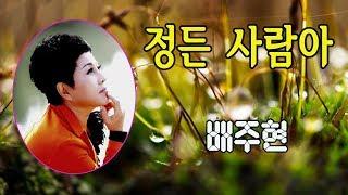정든 사람아 / 배주현 [금영 88358]