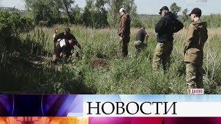 На Украине разгорается крупный скандал, связанный с погибшими военнослужащими в Иловайском котле.
