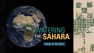 Watering the Sahara