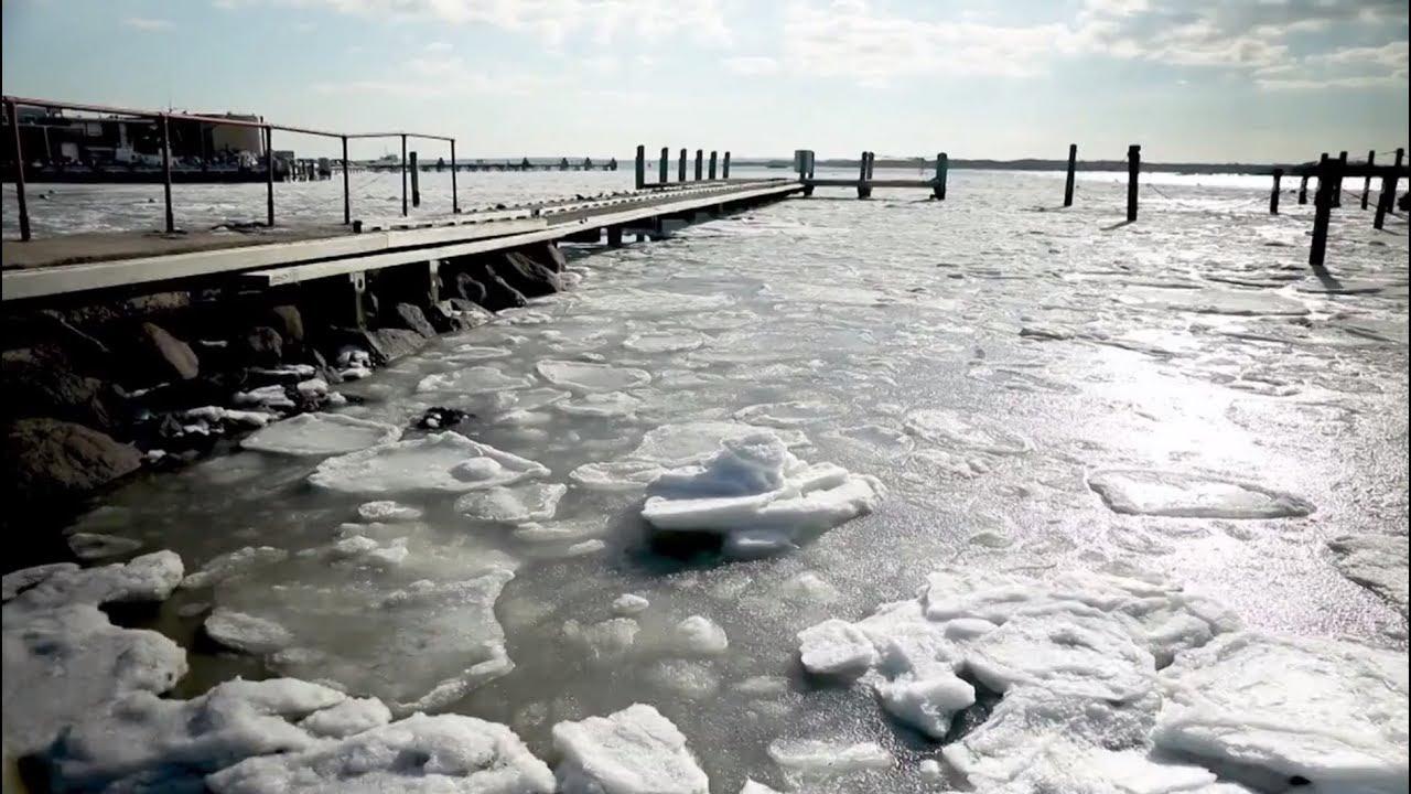 Покрытый льдом океан и вмёрзшие в водоём аллигаторы: на востоке США продолжаются аномальные морозы