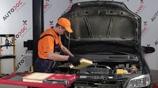 Las reparaciones básicas para OPEL ZAFIRA B Van que todo conductor debería conocer