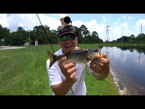 Slaying Ditch Pickles Before ICast 2019, Orlando FL