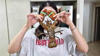 은혜가 닥치는 대로 해산물을 잡아서 먹어보자!