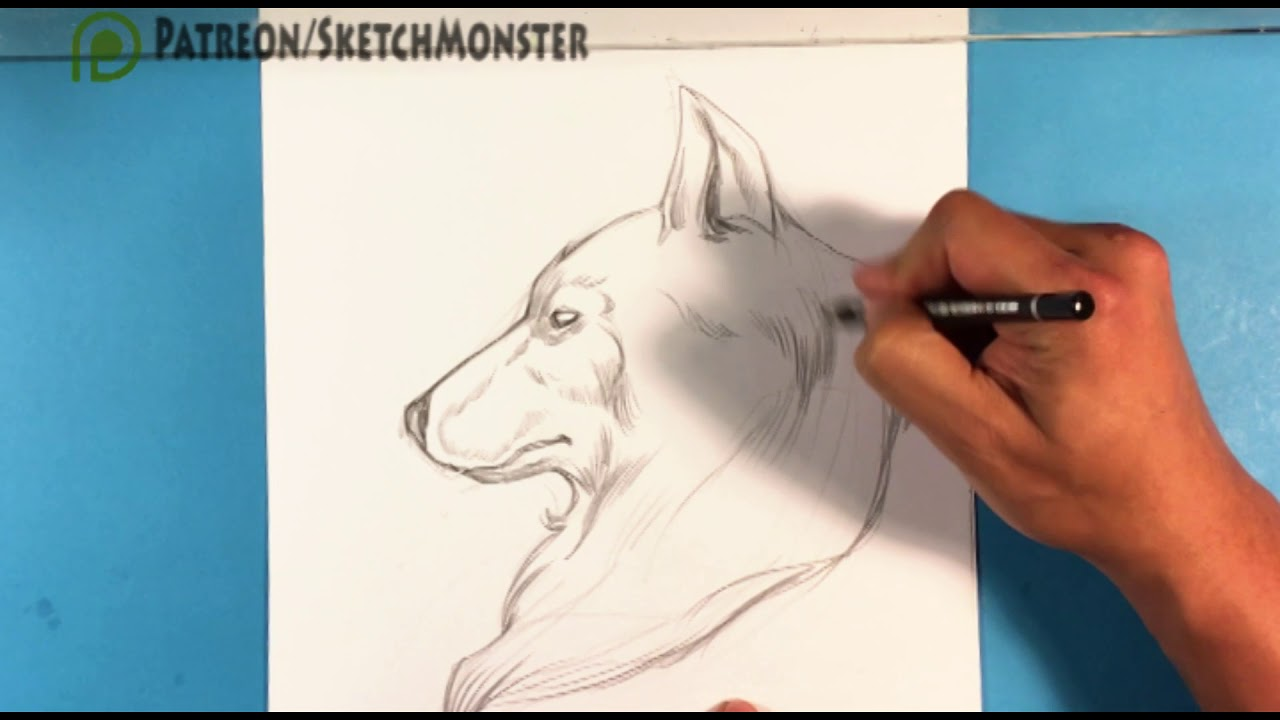 How To Draw A Wolf Moon Tattoo Learn Tattoo Art Youtube