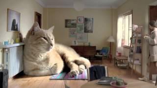 Гигантский кот в рекламе кофе Arlistan 'Le Gató'