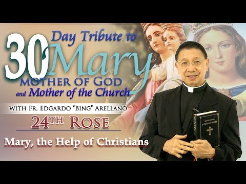 30 DAY TRIBUTE TO MARY  24TH ROSE:   Mary, the Help of Christians