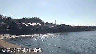 鳥取   琴浦町   菊港