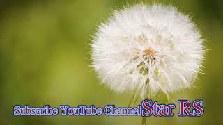 Very Funny Song 2018 Nai Kety Message Koi Gal Nai       by Star RS