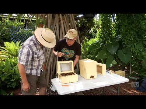 Gardening Australia Native Bees 2018 06 08