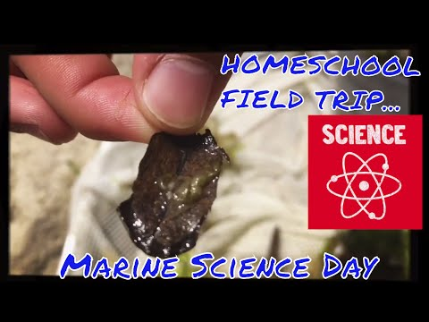 HOMESCHOOL FIELD TRIP| MARINE SCIENCE DAY| 2017