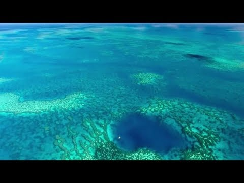 Marine biologist discovers: Blue Hole in the heart of the Great Barrier Reef is an underwater sink.