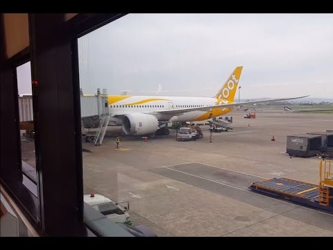 SCOOT TZ201 Economy Class [Taipei to Singapore] Review