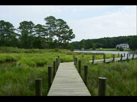 Waterfront Property For Sale on the Eastern Shore of Virginia