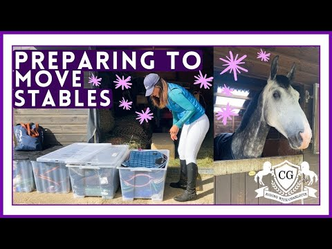 🛍🐎PREPARING TO MOVE STABLES + TACK SHOP TRIP | Riding With Charlotte