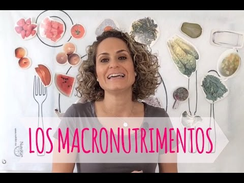 CUANTO COMER DE CARBOS, PROTEÍNAS Y GRASA PARA ADELGAZAR. NUTRIVLOGS. ANUTRICIONAL