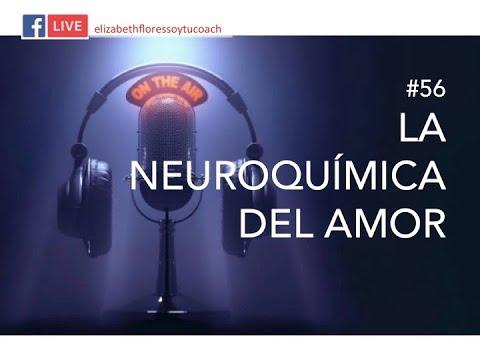 La Neuroquímica del Amor  (Elizabeth Flores Soy tu Coach radio)
