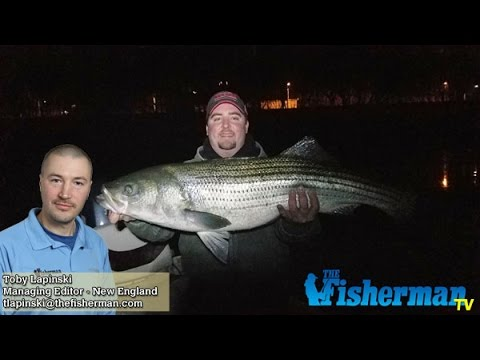 March 2 2017 new england fishing report with toby for Goose hummock fishing report
