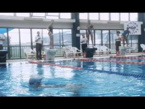"Download Underwater Pool scene סצנת הבריכה ""מתחת למים""י"