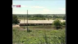 Кроличья ферма в Краснооктябрьском районе