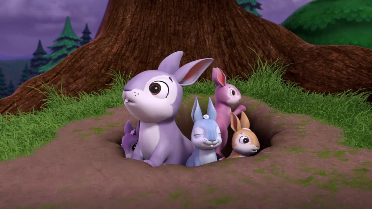 إنقاذ قطيع الأرانب.. شاهد الفيديو