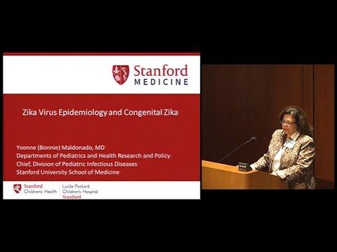 Zika Virus Epidemiology and Congenital Zika
