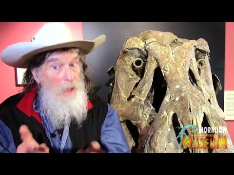 Are Dinosaurs Kosher? Dr. Bob Bakker has the answer!