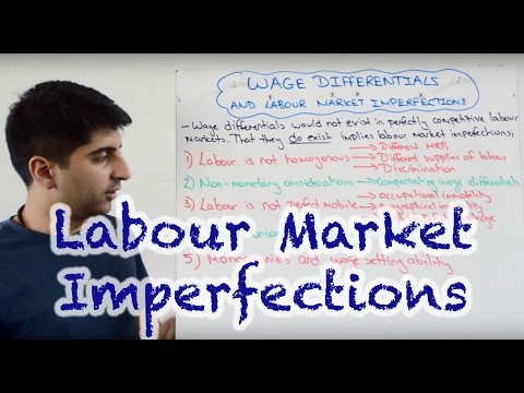 Wage Differentials and Labour Market Imperfections