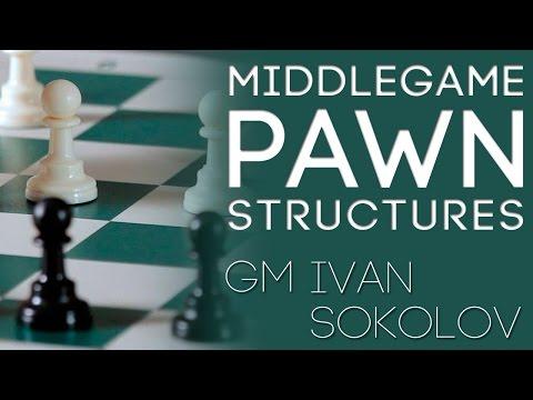 Watch how a TOP Grandmaster describes a complex position! - GM Ivan Sokolov  (GingerGM)