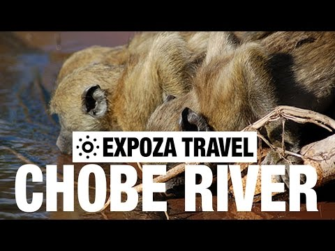 Chobe River Vacation Travel Video Guide