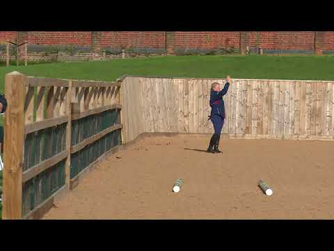 Young Horse Showjumping Training Part 5