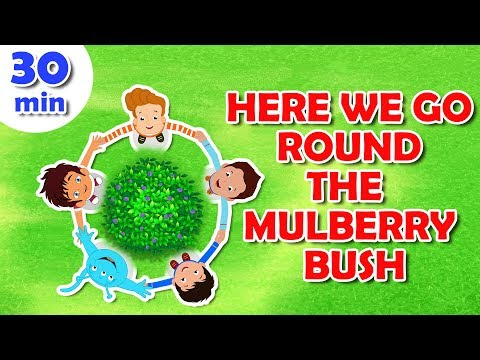 Here We Go Round The Mulberry Bush Nursery Rhyme || Popular Nursery Rhymes With Max And Louie