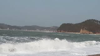 태안 파도리해수욕장 해변